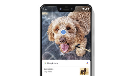 Google Pixel 3 XL Features